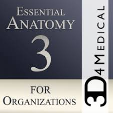 essential anatomy 3 apk essential anatomy 3 for orgs 1 1 3 apk obb apkplz