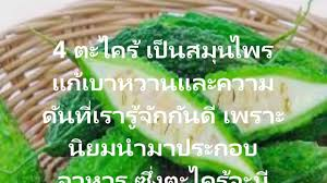 cuisine okay 7 สม นไพรพ นบ าน แก เบาหวานและความด นเม อร างกายม อ นซ ล นไม