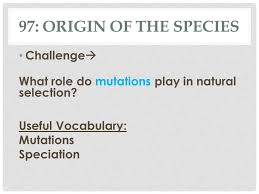 Challenge Origin Activity 97 Origin Of The Species 97 Origin Of The Species