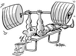 What Muscle Do Bench Press Work Assume A Bodybuilder Stops Working Out But Their Diet And