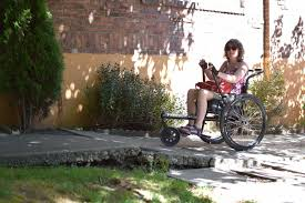 a tale of one house wheelchair wandering hometown hill a tale of two parks