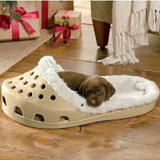 Comfortable Dog Sasquatch Shoe Pet Bed Pet Beds Dog And Animal