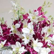 wholesale silk flowers flower market in guangzhou white dendrobium