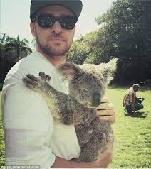 justin timberlake while in australia falls for marsupial named april