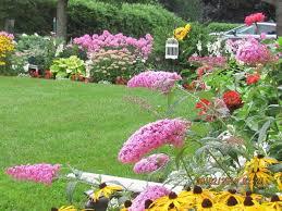 canada flowers gorgeous backyard garden in bloom hometalk