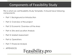 technical feasibility report template feasibility study template