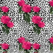 leopard fabric wallpaper gift wrap spoonflower