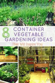 8 container vegetable gardening ideas that will inspire you