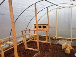 Inside Greenhouse Ideas by Chicken Coop Inside Greenhouse With Chicken Coop Inside Shed 9556
