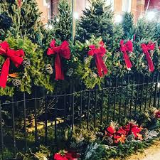 hanukkah bush for sale where to buy a real tree wreaths in hoboken and jersey city