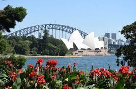 Botanic Garden Sydney Sydney Royal Botanic Garden Sydney Bims Classes Events