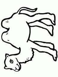 camel printable coloring pages for preschool camel coloring