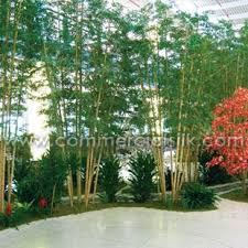 landscaping with artificial plants and trees for indoor offices