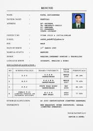 Resume Sample Bahasa Melayu by Contoh Application Letter And Cv