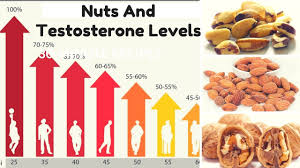 nuts and testosterone levels youtube