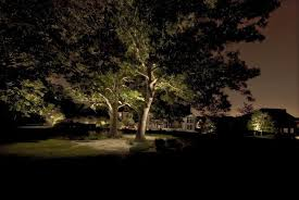 Landscape Tree Lights Solid Brass Led Moonlight Packages Metroplex Landscape Lighting