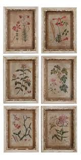 Williamsburg Home Decor Colonial Williamsburg Botanical Print Collection Price 115 95