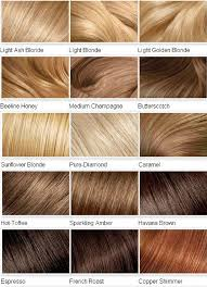 Types Of Hair Colour by Information About Shades Of Hair Dye At Dfemale