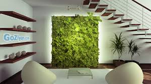 indoor wall garden indoor garden wall design