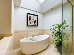 Best Plants For Bathrooms Bathroom Wallpaper Hd Awesome Stones Plants For Bathrooms