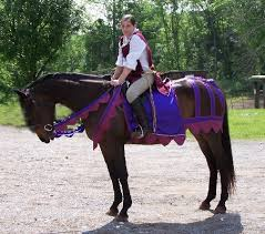 Horse Rider Halloween Costume 25 Horse U0026 Rider Halloween Costume Ideas Won U0027t