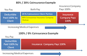 best dental insurance nc health insurance basics how to understand coverage