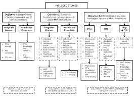 factors affecting the delivery access and use of interventions