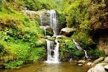 Rock Garden Darjeeling Visit Barbotey Rock Garden On Your Trip To Darjeeling Or India