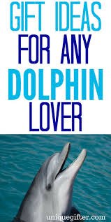 unique dolphin gifts 20 gift ideas for dolphin