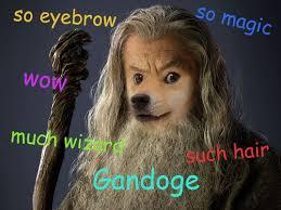 The Doge Meme - doge meme gandalf the amish spaceman
