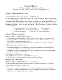 Human Resource Entry Level Resume Examples Of Human Resources Resumes 6 Human Resources Executive