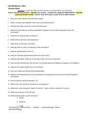 cell membranes worksheet wl 1 cell membrane video review sheet