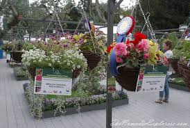 melbourne international flower and garden show 2017 the nomadic