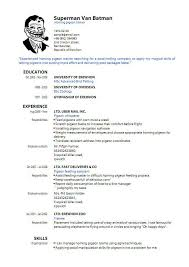 resume writing format pdf resume writing format pdf resume sle