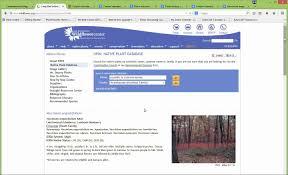native plant database plant association tutorial youtube