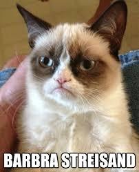 Barbra Streisand Meme - barbra streisand cat meme cat planet cat planet