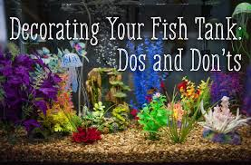 How To Make Fish Tank Decorations At Home Decorating Your Fish Tank Dos And Don U0027ts Pethelpful