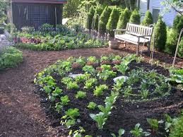 oklahoma kitchen garden best gardens images on pinterest backyard