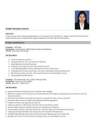 Credit Risk Business Analyst Resume Credit Analyst Resume