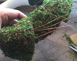 moss ribbon moss wreath remington avenue