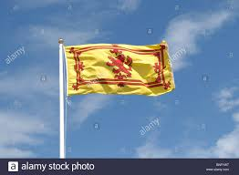 Scottish County Flags Scottish Flag And Colours Stock Photos U0026 Scottish Flag And Colours