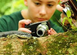outdoor images and moviemaking summer camp style nature