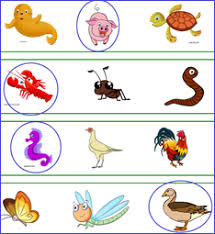 farm animals worksheets and lesson plans coloring sheets theme units