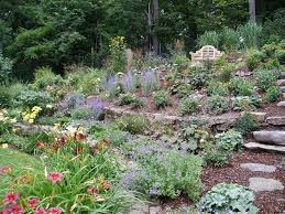 perennial flower garden design after we planted a range of non