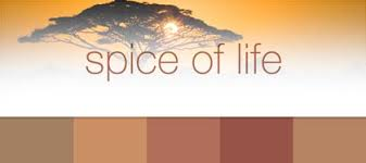 warm spice paint colors the ppgvoiceofcolor com spice of life