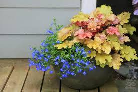 Ideas For Container Gardens - decorative ideas for creating a summer container garden garden
