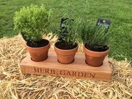 Kitchen Herb by Irish Oak Personalised Gifts Kitchen Herb Garden