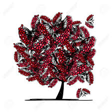 rowan tree sketch for your design royalty free cliparts vectors