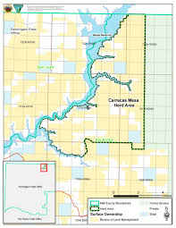New Mexico County Map by Programs Wild Horse And Burro Herd Management Herd Management