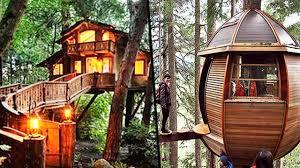Tree Houses Around The World Top 6 Tree Houses Around The World Video Dailymotion